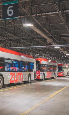 Buses at Transit Garage